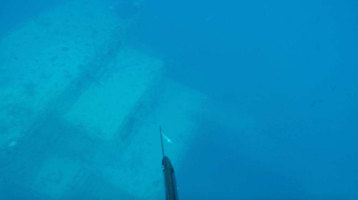 Diving the Thunderbolt Wreck
