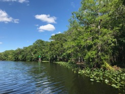 The St. Johns River
