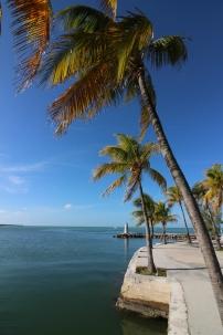 That island vibe - Keys